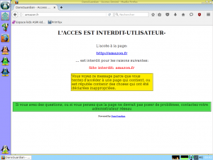 Filtrage intégré, Google bloqué par défaut