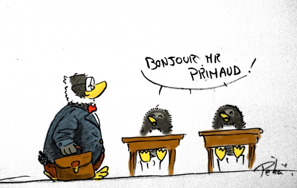 primaudclass